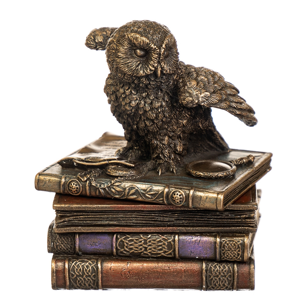 Скринька Veronese Сова на книгах 12 см 75511