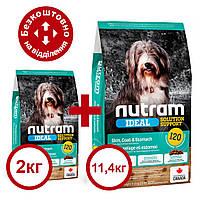 I20 Nutram Ideal 11,4 кг + 2 кг корм для собак з проблемами шкіри,вовни і травлення на основі ягняти