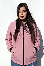 Жіноча легка куртка CR-60130 в розмірах 46-56