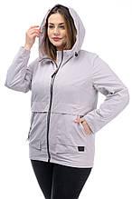 Жіноча легка куртка CR-60M88 в розмірах 50-60