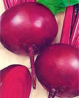 Семена свеклы Борщевая Кубанская