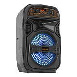 Акустическая аккумуляторная колонка (USB/FM/BT/LED) Ailiang LiGE-A68, фото 3