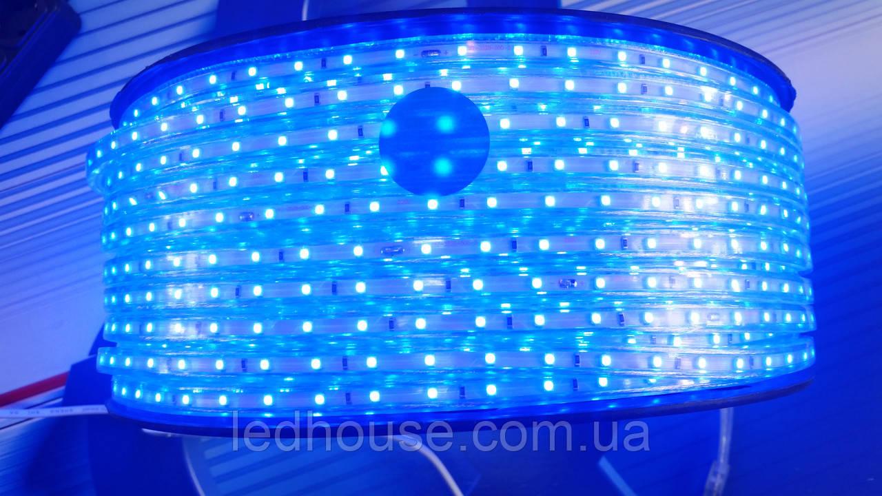 Светодиодная лента 220V smd 3528/60 led СИНЯЯ  IP68