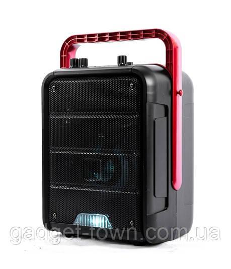 Акустична акумуляторна колонка (USB/FM/BT/LED) Ailiang KOLAV-585