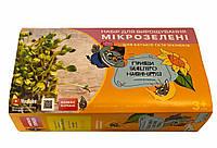 Эко набор для выращивания микрозелени Микрозелень Микрогрин, КОД: 2380095