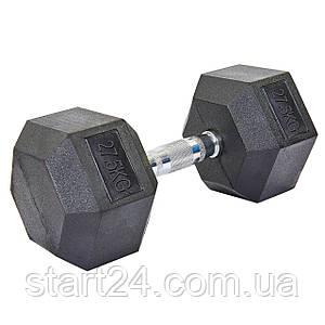 Гантель цельная шестигранная гексагональная SP-Planeta (1шт) SC-8013-27,5 27,5кг (сталь хромированная, резина,