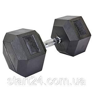 Гантель цельная шестигранная гексагональная SP-Planeta (1шт) SC-8013-30 30кг (сталь хромированная, резина, вес