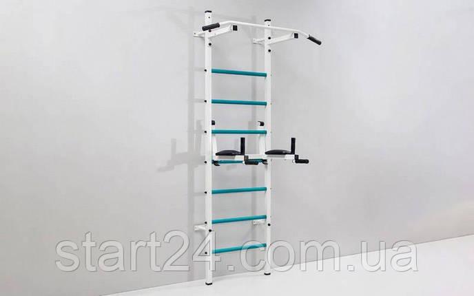 Шведская стенка с турником, брусьями, скамьей для пресса и спины Лидер L-6783 (СТ Лидер) (металл, пластик,, фото 2