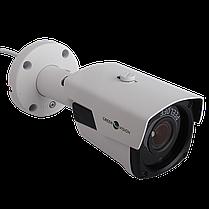 Наружная IP камера Green Vision GV-093-IP-E-COS50VM-40 POE, фото 3
