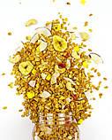 Гранола Тропик без сахара Bee Granola, 250 г, фото 2