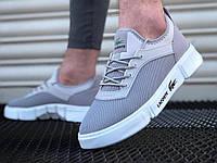 Мужские кроссовки кеды лакост весенние, обувь Lacoste серые