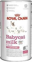 Royal Canin (Роял Канин) BabyCat Milk для котят, заменитель кошачьего молока 300 г