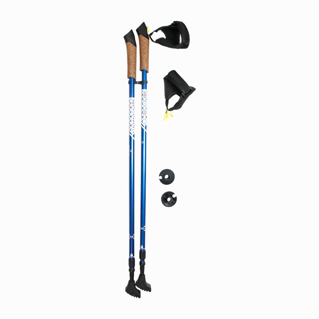 Палки трекинговые (туристические) для скандинавской ходьбы Reflex 201 синий