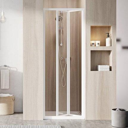 SDZ2-70 195 (Transparent) White Душевая дверь, фото 2