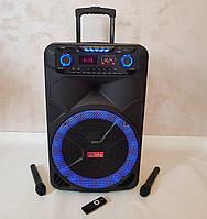 Колонка аккумуляторная с микрофонами SkySound SS-1011