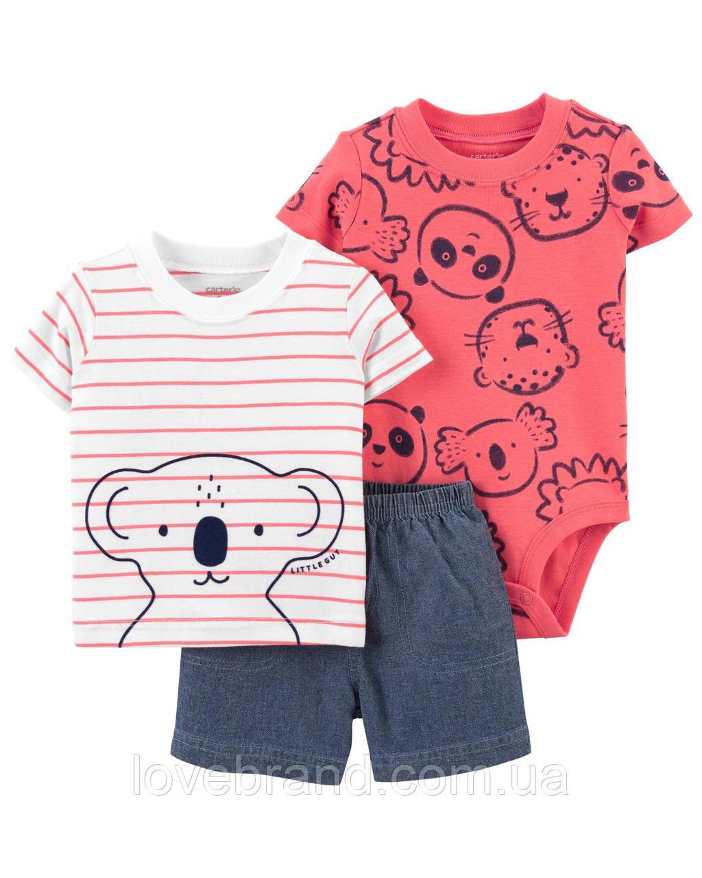 "Костюм для малыша Carters ""Коала"" шорты, футболка, бодик"