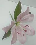 Лілія з листками, фото 2