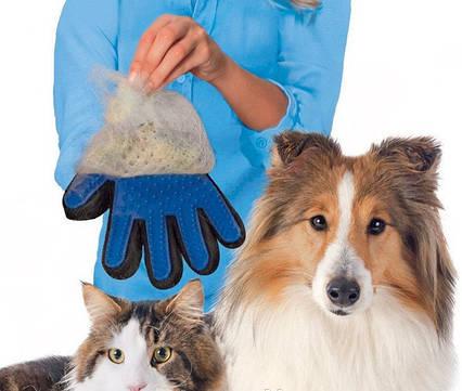 Массажная перчатка для собак true touch, Перчатка для вычесывания кошек и собак и чистки животных