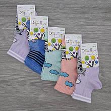 Шкарпетки дитячі з сіткою, з малюнками для дівчинки, ДОБРА ПАРА, р14-16, випадкове асорті, 30031228