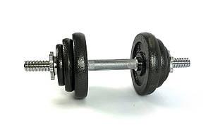 Комплект металевих гантелей NEO-SPORT - 20 кг розбірних зі змінними дисками, фото 2