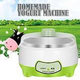 Йогуртница Yogurt Machine | Аппарат для приготовления йогурта для 7 различных видов кисломолочных продуктов, фото 3