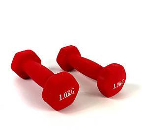 Гантели для фитнеса NEO-SPORT 1 кг. x 2 шт., металл с виниловым покрытием Красный, фото 2