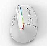 Бездротова безшумна вертикальна миша з підсвічуванням Delux M618C RGB Black White, фото 3