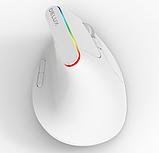 Бездротова безшумна вертикальна миша з підсвічуванням Delux M618C RGB Black White, фото 2