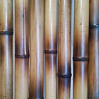 Бамбуковый  ствол-декоративный (диаметр  4-5 см , длина 3м.)