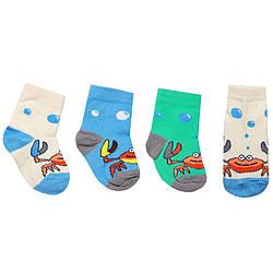 Носки для мальчика демисезонные NSM-54, GABBI (размер 10-12)