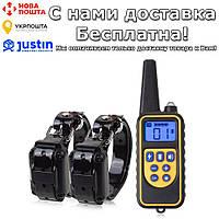Электроошейник для собак Pet DTC800 с пультом ду 2 receiver