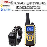 Ошейник Pet DTC800 электронный для дрессировки собак с пультом ДУ 800 м 1 receiver