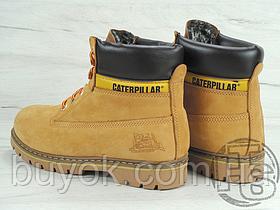 Женские ботинки Caterpillar Colorado Boot Winter Yellow (с мехом) 89733