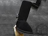 Женские сапоги UGG Bailey Bow Tall II Boot Black 1016434, фото 2