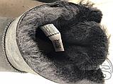 Женские угги UGG Mini Bailey Bow II Boot Black 1005062, фото 9
