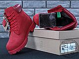 Жіночі черевики Timberland Classic Boots Bordo Winter (з хутром), фото 3