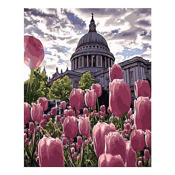 Картина по номерам Strateg Клумба тюльпанов, 40х50 см