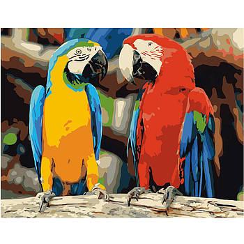 Картина по номерам Strateg , Яркая пара попугаев 40х50 см