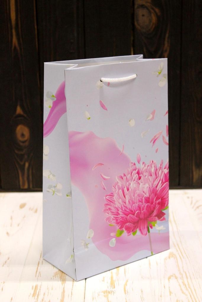 Подарунковий паперовий пакет Упаковкин 26*15,5*8см 12шт/уп №ПАК СР-1021КРТ