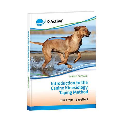 "Книга ""Introduction to the Canine kinesiology taping method"" на английском языке, фото 2"
