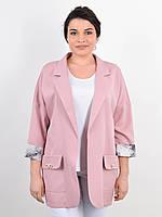 Пиджак женский большого размера весна-лето,цвет пудра 50-52,54-56,58-60,62-64