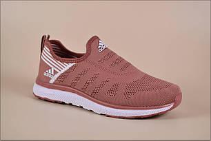 Женские кроссовки Adidas Free Run Powder