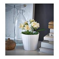 """IKEA """"ФЕЙКА"""" Искусственное растение в горшке, Роза разные цвета, 9 см"""