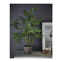 """IKEA """"ФЕЙКА"""" Искусственное растение в горшке, бамбук, 12 см"""