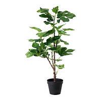 """IKEA """"ФЕЙКА"""" Искусственное растение в горшке, Смоковница, 12 см"""