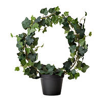 """IKEA """"ФЕЙКА"""" Искусственное растение в горшке, Плющ, 12 см"""