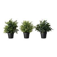 """IKEA """"ФЕЙКА"""" Искусственное растение в горшке, травы, различные растения, 10 см"""