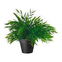 """IKEA """"ФЕЙКА"""" Искусственное растение в горшке, Комнатный бамбук, 10 см"""