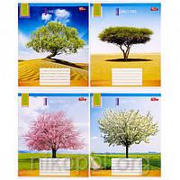 """Зошит 36 аркушів лінія, серія """"Дерево"""", білизна 100%, фото 1"""
