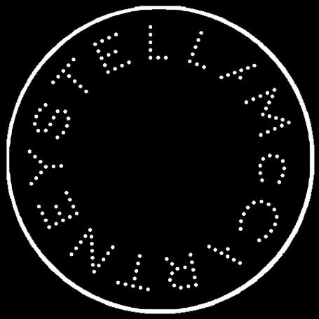 Жіночі кросівки Stella McCartney
